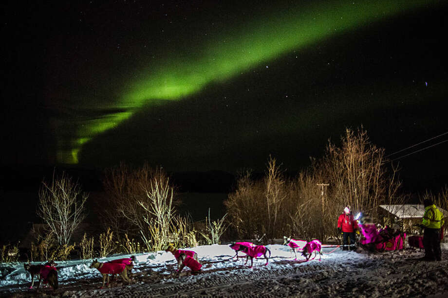 DeeDee Jonrowe arrives at the Ruby, Alaska checkpoint under the Northern Lights during the Iditarod Trail Sled Dog Race on Wednesday, March 11, 2015. (AP Photo/Alaska Dispatch News, Loren Holmes)
