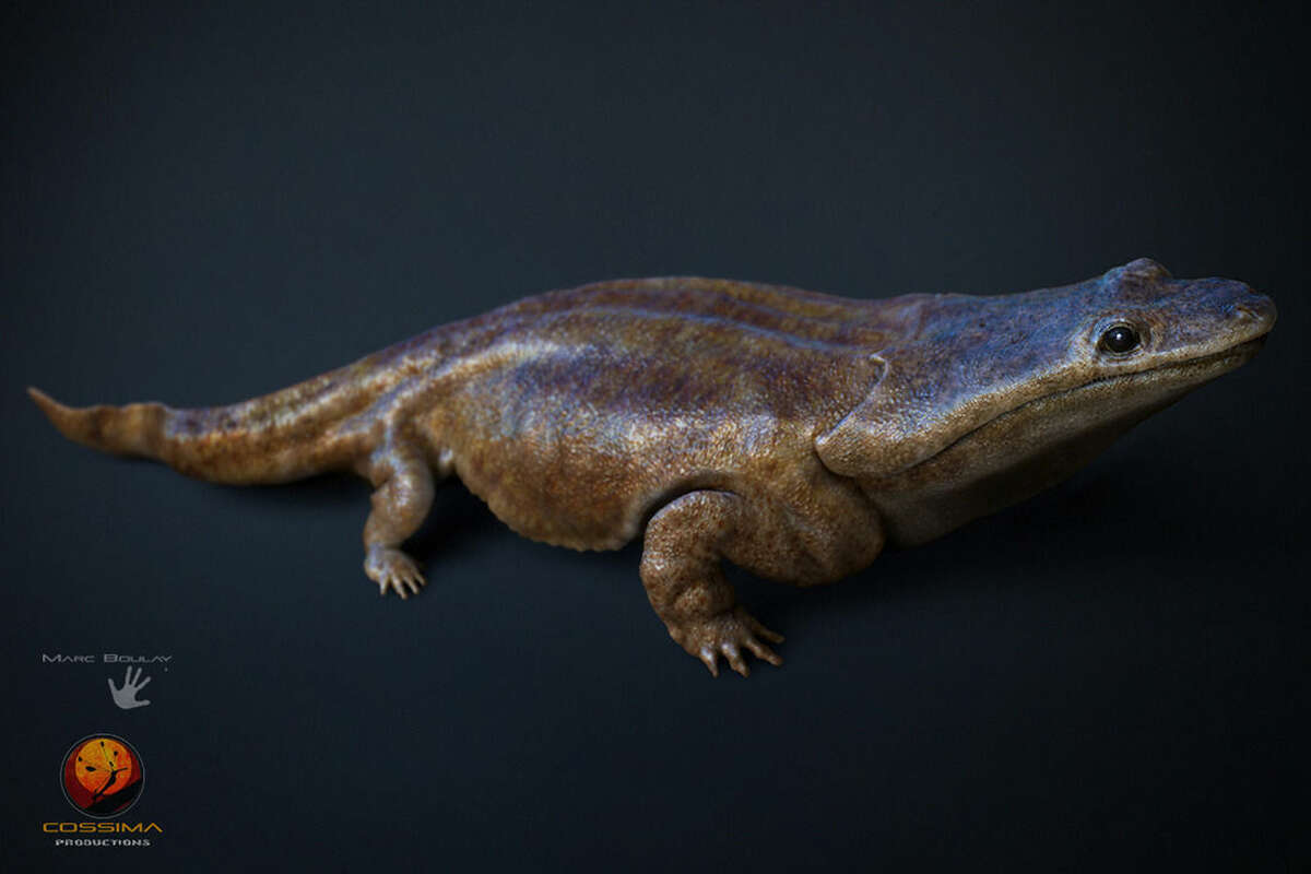In this image made available by the University of Edinburgh on Tuesday March 24, 2015 shows an artist's rendition of a previously unknown species of crocodile-like