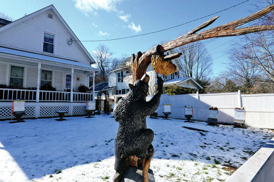 Beekeeping on Silvermine Ave. Zoning Commission will hold public hearing in February on proposal to limit bee keeping in Norwalk to two hives per quarter acre of property.Hour photo / Erik Trautmann / (C)2012, The Hour Newspapers, all rights reserved