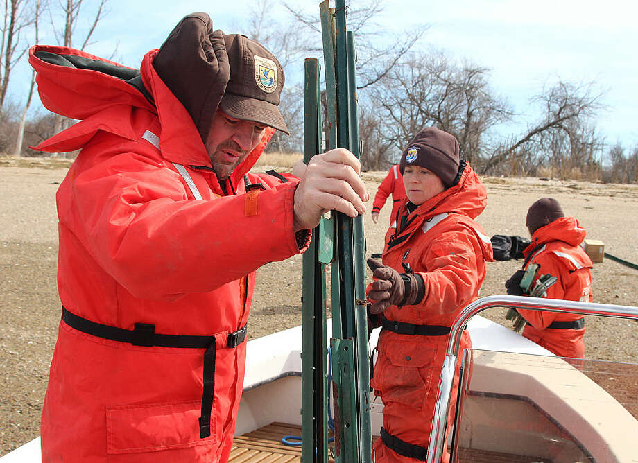 Hour photo/Chris Bosak Rick Potvin, manager of the Stewart B. McKinney NWR, hands poles to biologist Kris Vagos on Wednesday on Chimon Island. The U.S. Fish & Wildlife officials were on the island to mark off areas to protect a bald eagle nest.