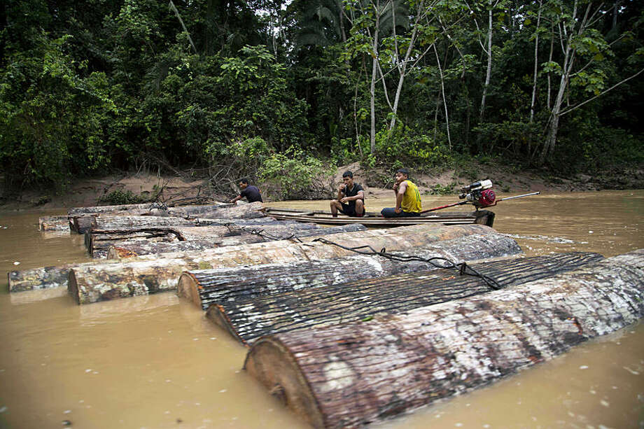 In this March 17, 2015 photo, Ashaninka Indian men, identified by locals as illegal loggers, tie tree trunks together to move them along the Putaya River near the hamlet of Saweto, Peru. Illegal logging persists unabated in this remote Amazon community where four indigenous leaders who resisted it were slain in September. The Putaya River is the waterway that transports felled trees, cut both legally and illegally, to the city of Pucallpa. (AP Photo/Martin Mejia)