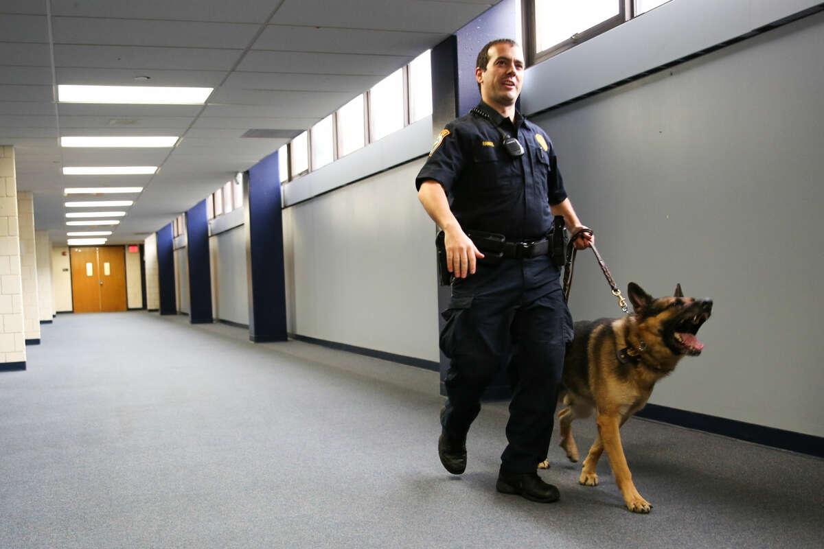 Officer Steven Rangel walks K-9 Unit Enzo through the halls of Wilton High School during an illegal drug search.