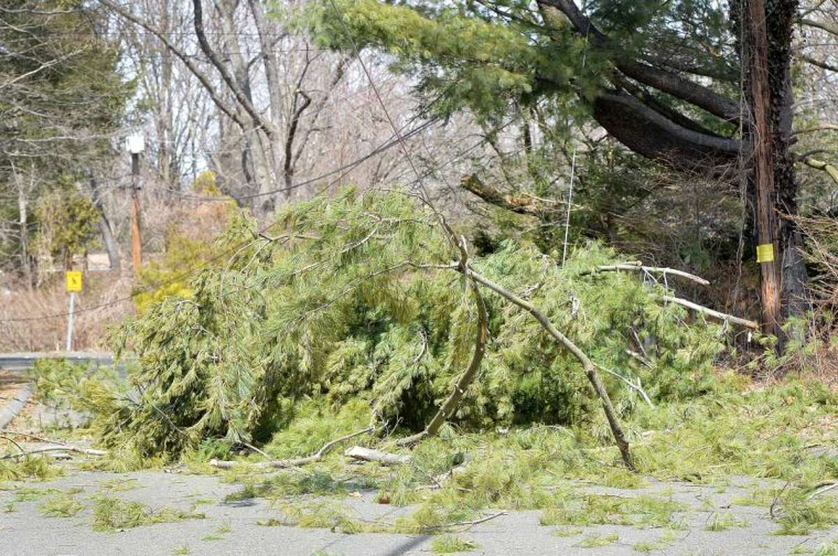 Hour Photo/Alex von Kleydorff High winds brought down a limb from a pine tree, taking down wires on Wafarer Rd closing the road and causing power outages.