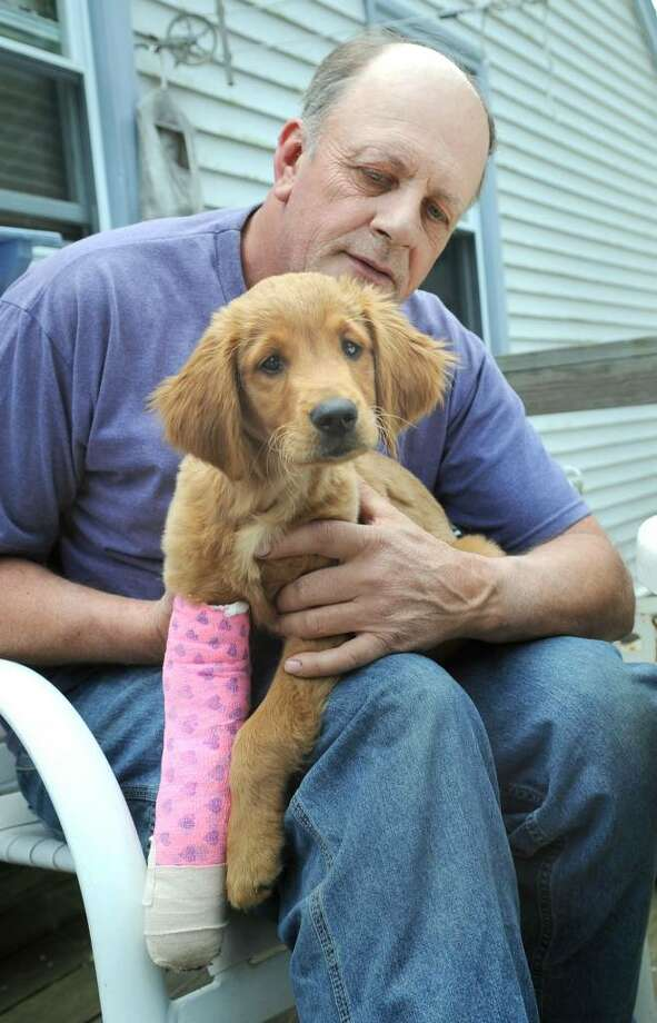 Guy Marchison, 55, of Ridgefield, with his dog, Star, a golden retriever puppy. Guy and Star were injured by an attack by two German shepherds. Photo: Carol Kaliff / The News-Times