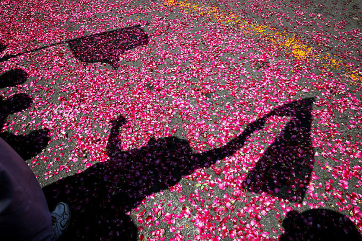 Shadows of flag-waving supporters are cast on flower petals thrown by them as India's ruling Congress party president Sonia Gandhi arrives to file her nomination papers for the upcoming general elections, in Rae Bareli, in the northern state of Uttar Pradesh, India, Wednesday, April 2, 2014. India will hold national elections from April 7 to May 12, kicking off a vote that many observers see as the most important election in more than 30 years in the world's largest democracy. (AP Photo/Rajesh Kumar Singh)