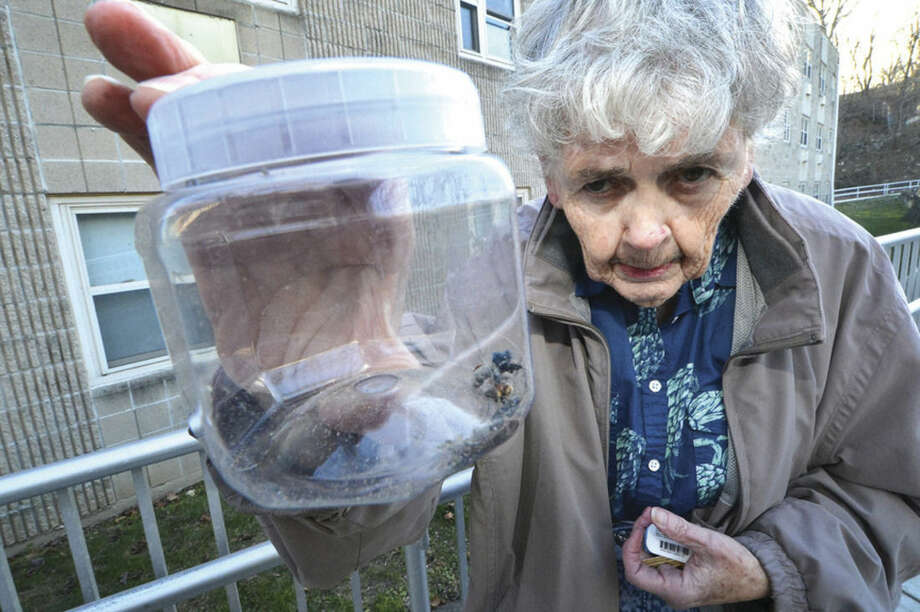 Hour Photo/Alex von Kleydorff June Talarico holds a jar with bedbugs she collected from inside her senior housing apartment