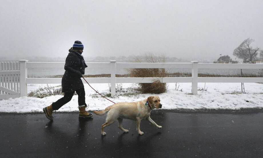 Hour Photo/Alex von Kleydorff Time for a walk in the snow with the dog along Marvin Beach on Monday morning