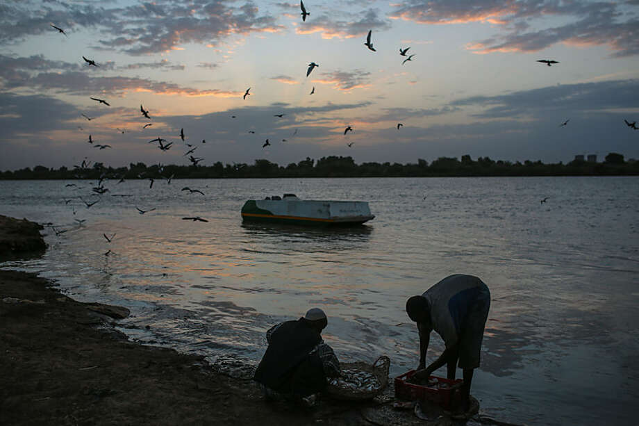 Sudanese fishermen wash their day's catch by the Nile River bank at dawn, after an overnight fishing trip, in Khartoum, Sudan, Thursday, April 16, 2015. (AP Photo/Mosa'ab Elshamy)