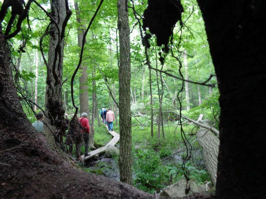 Check out some of Connecticut's best hiking trails this weekend. Here'sour listof top spots to check out. Find out more: http://bit.ly/1VLwmwW(Photo: Meg Barone)