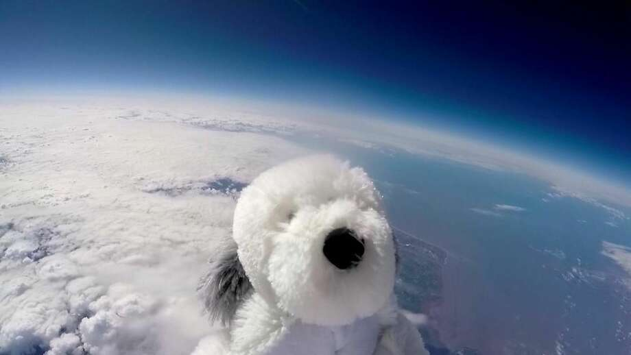 Sam the cuddly toy dog flies high in the sky after taking off from Morecambe, England Tuesday April 5, 2016 attached to a special camera and a helium balloon. Sending the toy dog into the sky was part of a science project by Morecambe Bay Community Primary School which joined forces with a local hotel . The toy dog reached an altitude of 12 miles above the earth's surface. (Morecambe Bay Community Primary School and English Lakes Hotels Resorts & Venues via AP) TV OUT