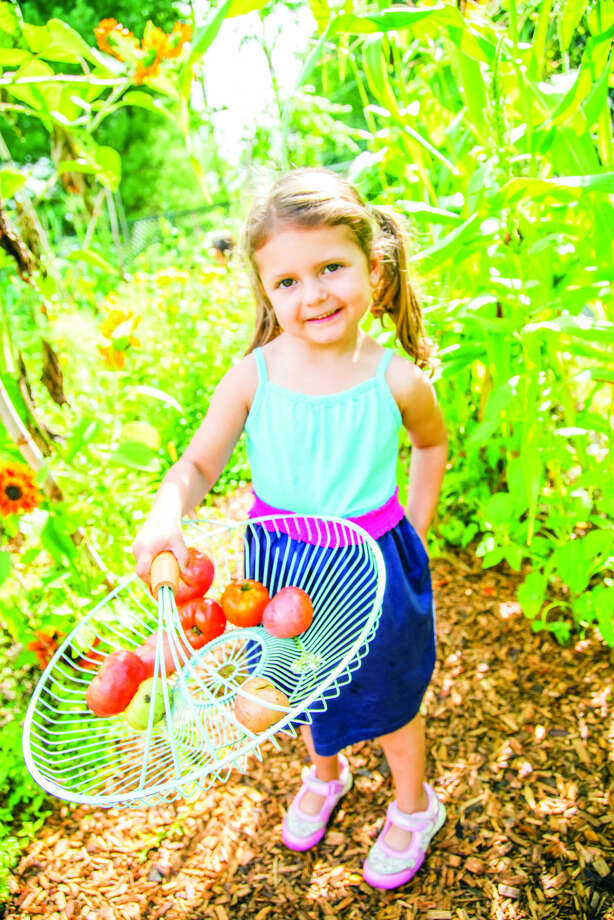 mead school - vegetable gardening