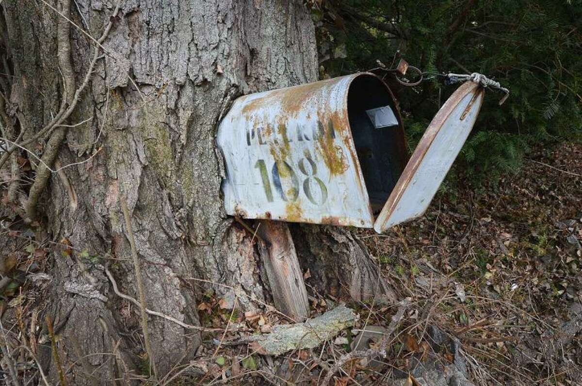 Hour Photo/Alex von Kleydorff This mailbox has seen some service for more than a few years in Norwalk, as the tree grows around the box and slowly envelops it from behind, they have become one.