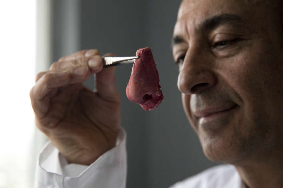 """Professor Alexander Seifalian poses for photographs with a synthetic polymer nose at his research facility in the Royal Free Hospital in London, Monday, March 31, 2014. In a north London hospital, scientists are growing noses, ears and blood vessels in the laboratory in a bold attempt to make body parts using stem cells. It is among several labs around the world, including in the U.S., that are working on the futuristic idea of growing custom-made organs in the lab. While only a handful of patients have received the British lab-made organs so far— including tear ducts, blood vessels and windpipes — researchers hope they will soon be able to transplant more types of body parts into patients, including what would be the world's first nose made partly from stem cells. """"It's like making a cake,"""" said Alexander Seifalian at University College London, the scientist leading the effort. """"We just use a different kind of oven."""" (AP Photo/Matt Dunham)"""
