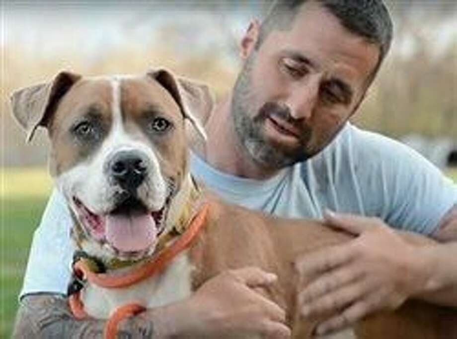 How volunteers are making a difference for animal welfare