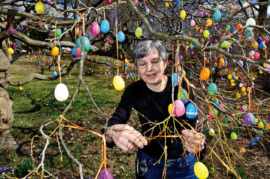 Hour photo / Erik Trautmann Jalna Jaeger decorates an Easter Egg Tree outside her home on East Ave. Wednesday. She has been decorating the tree every Spring for 7 years.