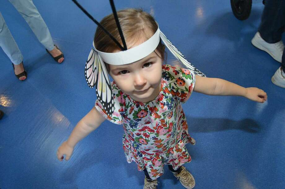 Hour Photo/Alex von Kleydorff 2yr old Finley Haven trys to fly by waving her arms after she made her own set of butterfly wings, visitors learned about the life of the Monarch butterfly at The Maritime Aquarium on Wednsday
