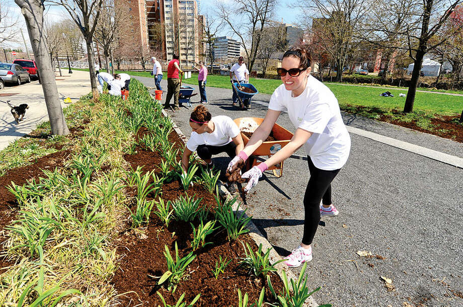 Nearly 100 employees from Diageo North America's finance team including GiGi Van Waes clean up Stamford's Mill River Park for one day of concentrated community service.