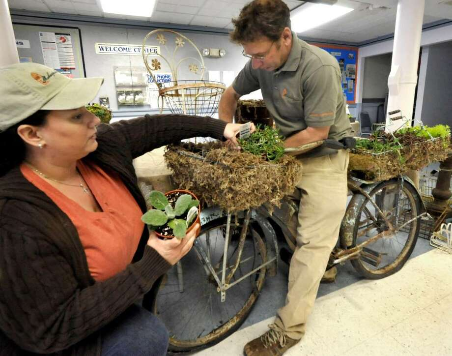 Heather Luizzi and Mark Fancher, of Shakespeare's Garden at Burr Farm in Brookfield, prepare an annual succulent container with a found object, an old bicycle, for a presentation to the New Milford Garden Club at the First Congregational Church in New Milford, on Tuesday, April 13, 2010. Photo: Michael Duffy / The News-Times