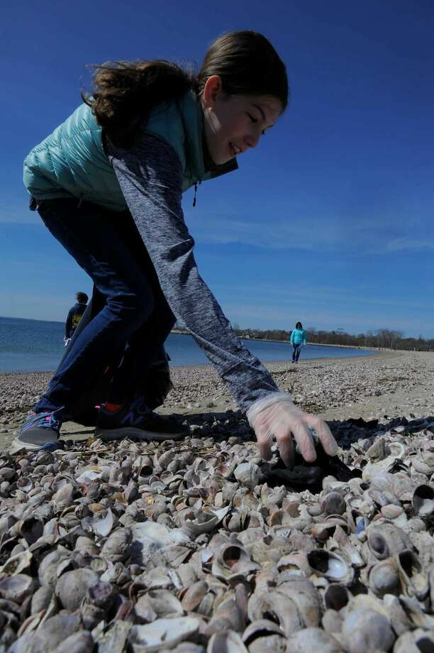 Madison Hart, a sixth-grader at King Academy, picks up beach debris. Above right, volunteers work on the cleanup.