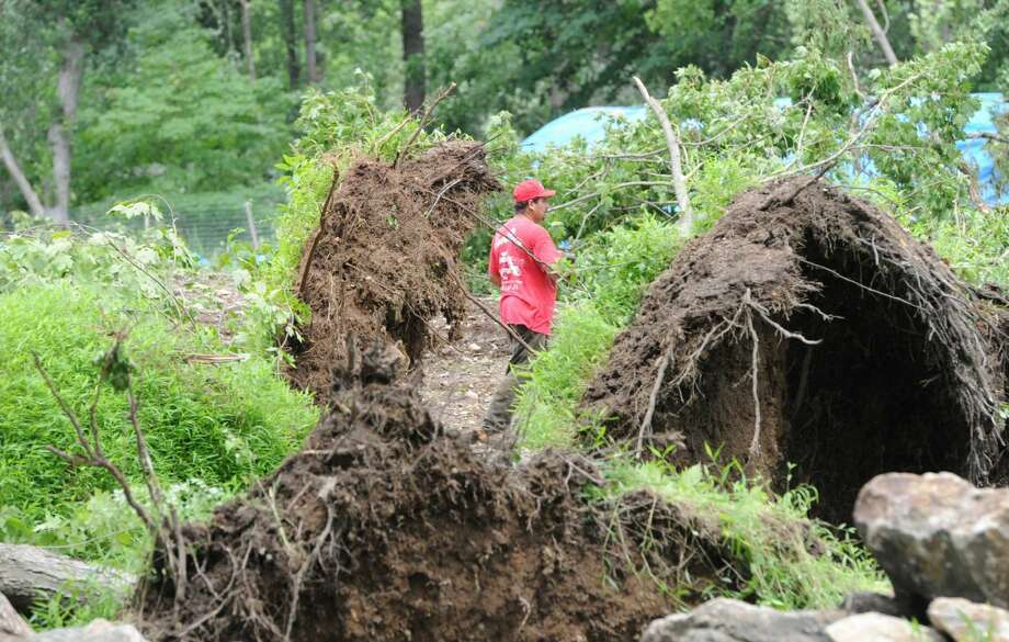 A Ceci Brothers Company landscaper walks among uprooted trees on a Taconic Road property caused by a tornado that touched down in the Greenwich backcountry Monday morning, as seen Wednesday, July 3, 2013. The National Weather Service said the EF0 tornado touched down late Monday morning creating a 3.7 mile-long path between Greenwich and Stamford.
