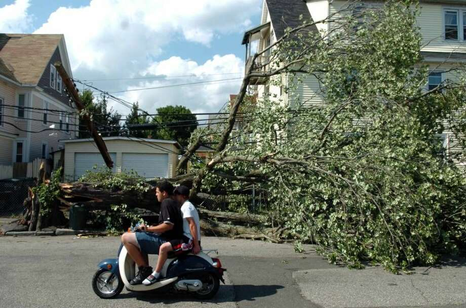 A fallen tree on Stillman Street in Bridgeport Friday June 25, 2010. The damage was the result of a tornado with 100 mph winds that touched down in Bridgeport Thursday.