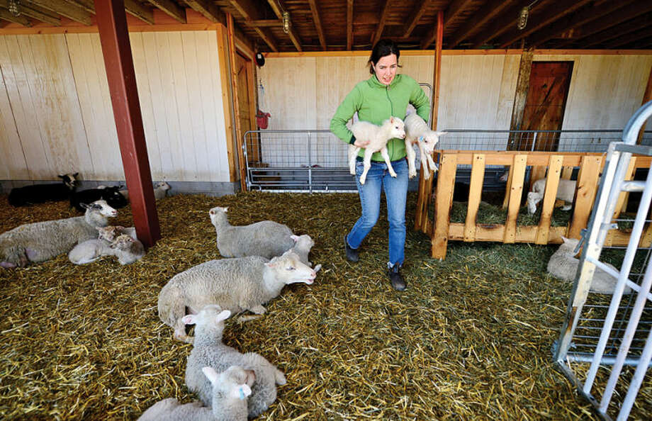 Dina Brewster runs The Hickories Farm in Ridgefield, which is owned and operated by the local woman. Agriculture in the state of Connecticut has seen a rise in women-farmers.