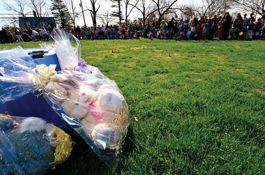 Hour photo / Erik Trautmann Finding the golden eggs earn the lucky recipient a stuffed bunny during the Rowayton Civic Association annual Easter Egg Hunt at the Rowayton Community Center Saturday