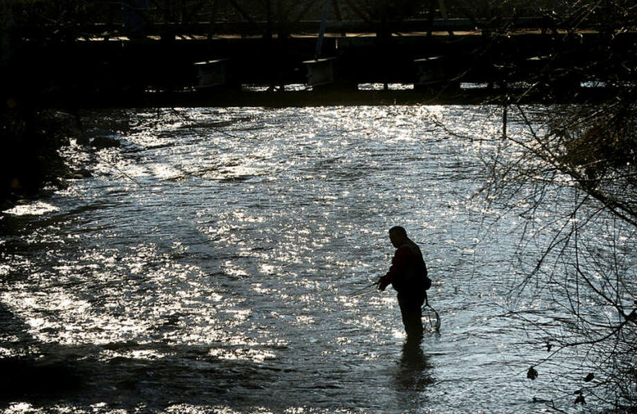 Hour photo / Erik Trautmann Mike Manzi fishes along the Norwalk River in Wilton on the opening day of trout season Saturday.