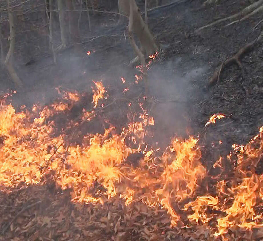 Brush fire alert.