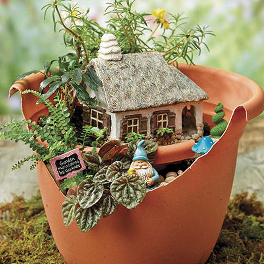 Gardening with an Enchanted Twist