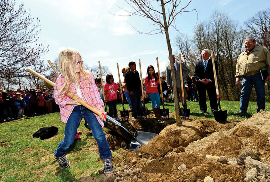 Hour photo / Erik Trautmann 2nd grader Elena Abshire takes part in a tree planting ceremony as the Norwalk Tree Advisory Committee, the Norwalk Tree Alliance and the Norwalk Public Schools conduct an Arbor Day Celebration at Wolfpit Elementary School Friday. The program featured a proclamation from Mayor Harry Rilling, remarks by Schools Superintendent Dr. Manuel Rivera, poster contest prizes and the planting of a tree.