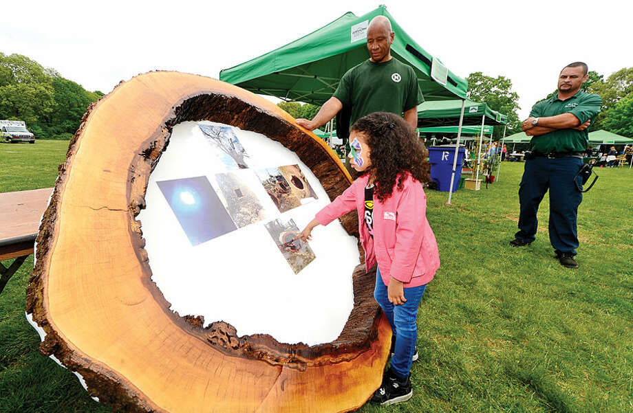Hour photo / Erik Trautmann 4 year old Melody Lewis looks at the interior of large hickory tree which was one of the oldest in Norwalk displayed by Eric Montgomery and Jose Lopez of the Department of Public Works during the Norwalk Tree Alliance's 8th annul Tree Fest Saturday at Cranbury Park.