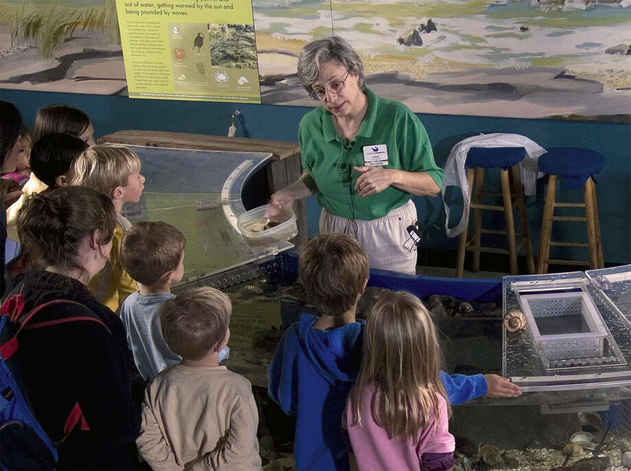 Maritime Aquarium seeks volunteers
