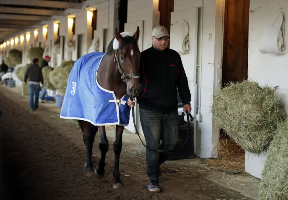 Kentucky Derby entrant Wicked Strong is walked after a morning workout at Churchill Downs Friday, May 2, 2014, in Louisville, Ky. (AP Photo/Charlie Riedel)