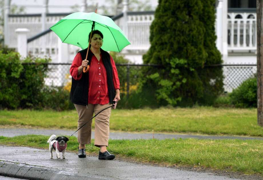 As a light rain falls, Roseann Bria walks Junebug, her maltese Japanese chin mix, along Gulf Street in Milford, Conn., on Friday May 13, 2016. The rain will give way for warm temperatures and partly sunny skies on Saturday and Sunday.