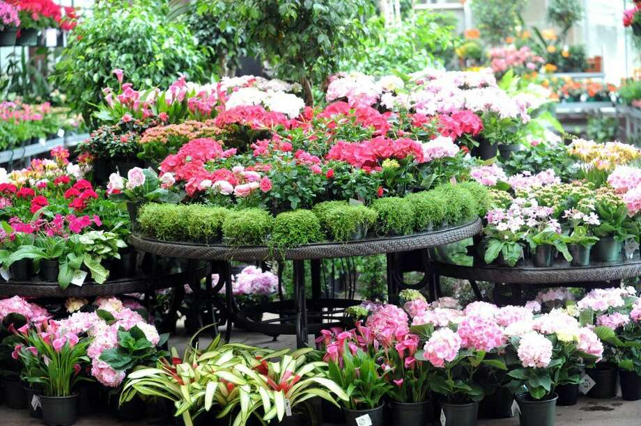 Landscaper - McArdle's Florist and Garden Center; Greenwich (Job open as of May 16, 2016)