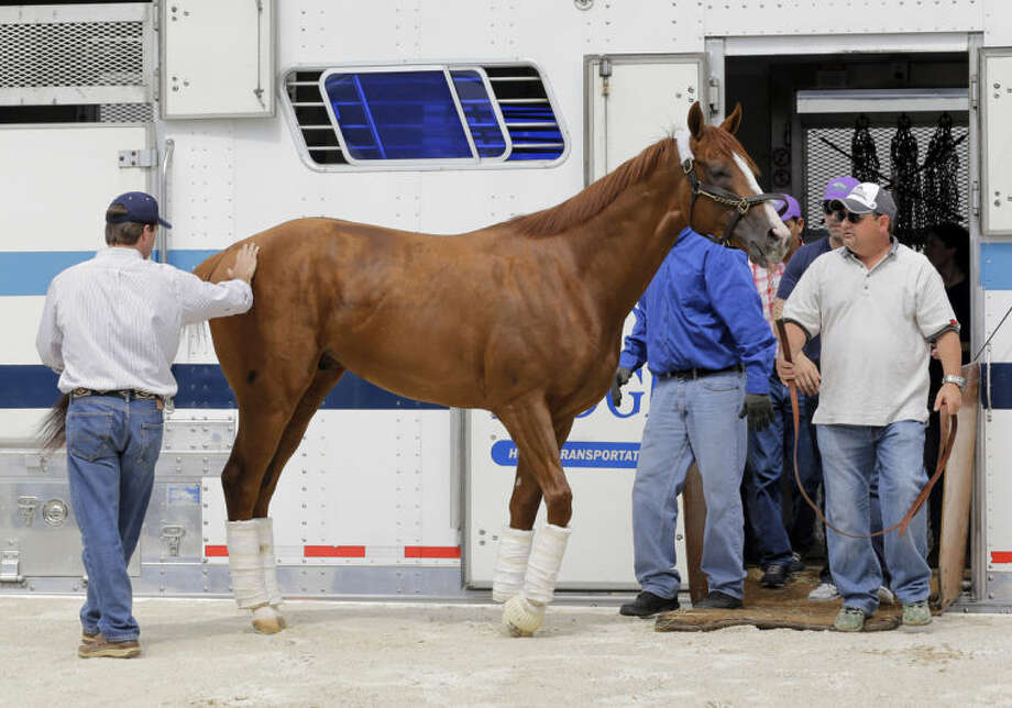 Kentucky Derby winner California Chrome walks with assistant trainer Alan Sherman, right, after being unloaded from a trailer at Pimlico Race Course in Baltimore, Monday, May 12, 2014. The Preakness Stakes horse race, second race in horseracing's Triple Crown, is scheduled to take place Saturday, May 17. (AP Photo)