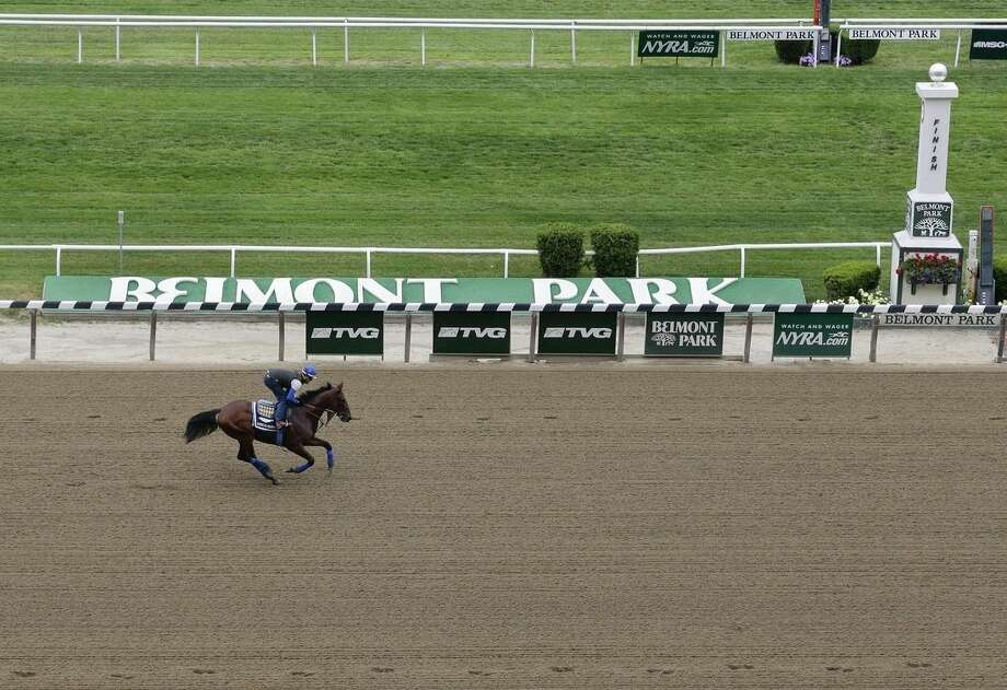 Kentucky Derby and Preakness Stakes winner American Pharoah, with exercise rider Jorge Alvarez up, gallops around the track at Belmont Park, Friday, June 5, 2015, in Elmont, N.Y. American Pharoah will try for a Triple Crown when he runs in Saturday's 147th running of the Belmont Stakes horse race. (AP Photo/Julie Jacobson)