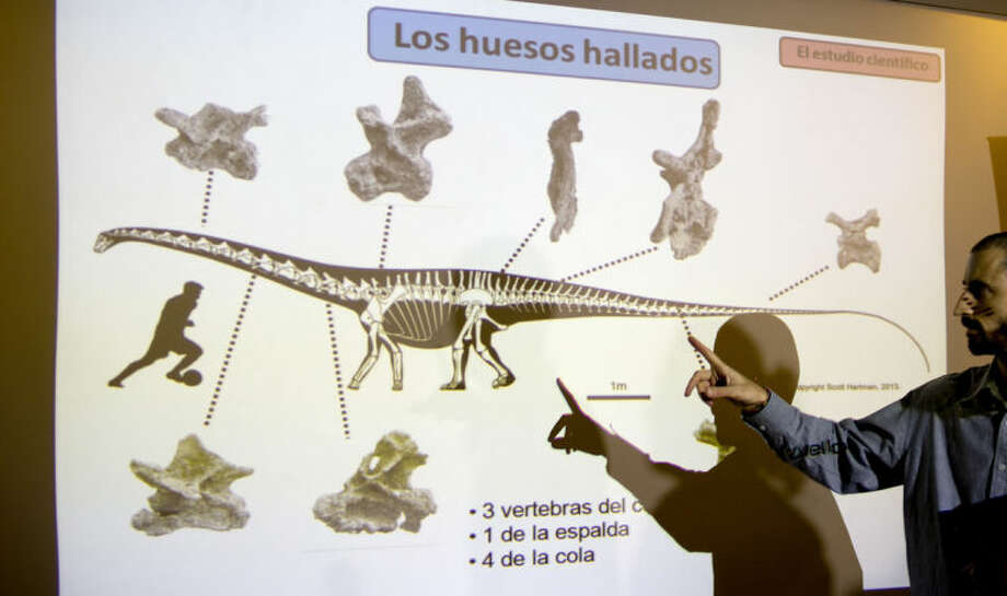 "Paleontologist Pablo Gallina speaks to the press about a newly discovered dinosaur discovered in Argentina as he points to an illustration that reads in Spanish ""Bones recovered"" in Buenos Aires, Argentina, Thursday, May 15, 2014. Gallina and his team of Argentine paleontologists say the 19 vertebrae they recovered in Argentina's Patagonia region belongs to a new species of Diplodocid they named ""Leiknupal laticauda,"" providing what they say is the first evidence that a family of long-necked, whip-tailed dinosaurs survived beyond the Jurassic period, when they were thought to have gone extinct. (AP Photo/Natacha Pisarenko)"