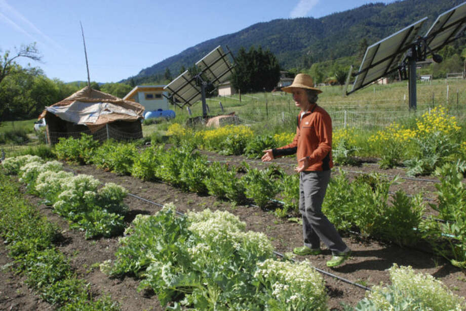 Chuck Burr explains his organic seed growing techniques May 12, 2014, on his farm outside Ashland, Ore. Organic farmers are asking voters in Jackon and Josephine counties to adopt a ban on cultivating genetically engineered crops, which organic farmers fear could cross-pollinate with some of their crops. (AP Photo/Jeff Barnard)