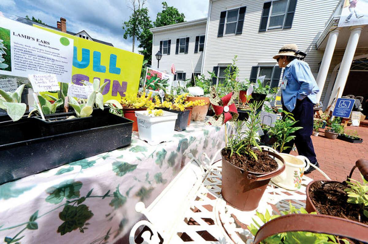 Hour photo / Erik Trautmann Norwalk Garden Club Plant Sale at 1 Park Saturday.