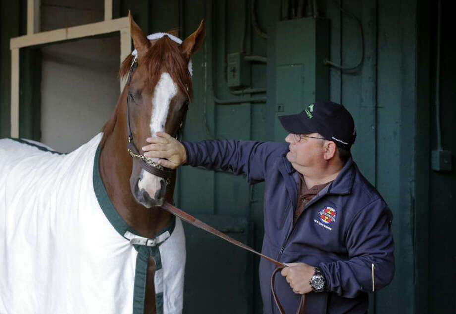 Assistant trainer Alan Sherman rubs Kentucky Derby and Preakness Stakes winner California Chrome's nose during a walk at Pimlico Race Course in Baltimore, Monday, May 19, 2014. California Chrome is scheduled to depart Tuesday for Belmont Park, N.Y. The Belmont Stakes horse race takes place June 7. (AP Photo/Patrick Semansky)