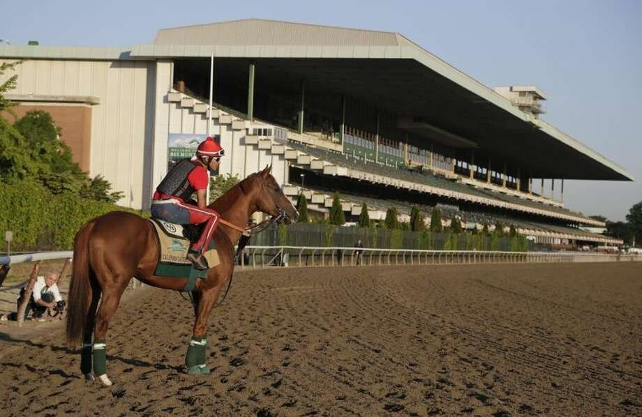 Kentucky Derby and Preakness winner California Chrome pauses as he enters the track with exercise rider Willie Delgado up at Belmont Park, Monday, June 2, 2014, in Elmont, N.Y. California Chrome will attempt to become the first Triple Crown winner since Affirmed in 1978 when he races in the 146th running of the Belmont Stakes on Saturday. (AP Photo/Julie Jacobson)