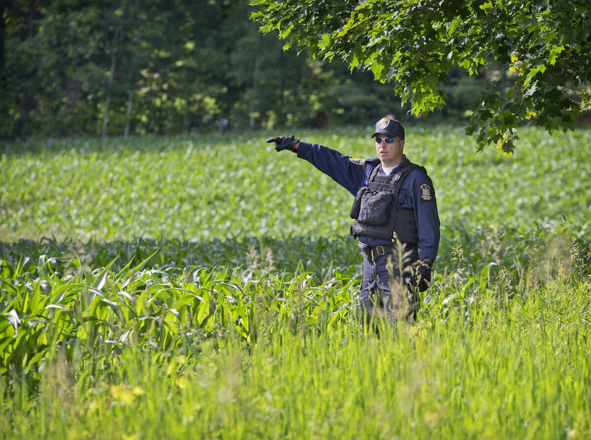 A New York State corrections officer searches for two escaped prisoners from Clinton Correctional Facility, Wednesday, June 24, 2015, in Malone, N.Y. Hundreds of searchers checked all-terrain vehicle trails and logging roads and went door-to-door in far northern New York trying to close in on David Sweat and Richard Matt, who escaped from the maximum-security prison more than two weeks ago. (Jason Hunter/The Watertown Daily Times via AP) SYRACUSE OUT MANDATORY CREDIT