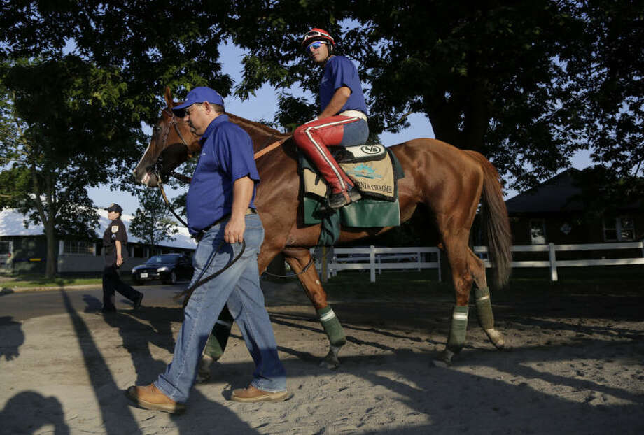 Assistant trainer Alan Sherman leads California Chrome back to the stable with exercise rider Willie Delgado up after a workout, Tuesday, June 3, 2014, in Elmont, N.Y. The Kentucky Derby and Preakness Stakes winner will attempt to become the first Triple Crown winner since Affirmed in 1978 when he races in the146th running of the Belmont Stakes on Saturday. (AP Photo/Julie Jacobson)