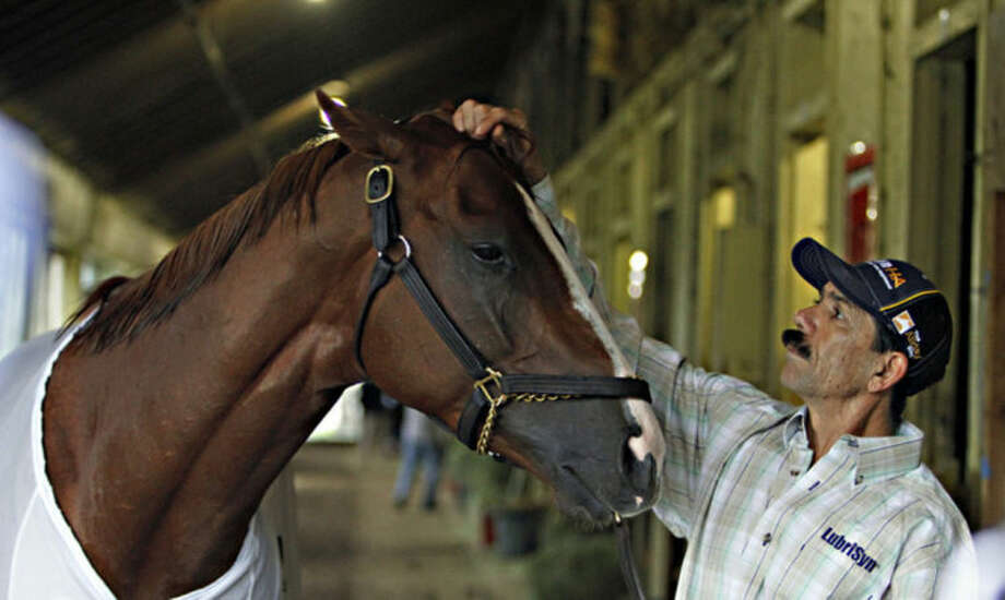 Groom Raul Rodriguez, right, rubs Belmont Stakes hopeful California Chrome in the barn at Belmont Park race track in Elmont, NY., Thursday, June 5, 2014. The Belmont Stakes will be run on Saturday, June 7th. (AP Photo/Garry Jones)