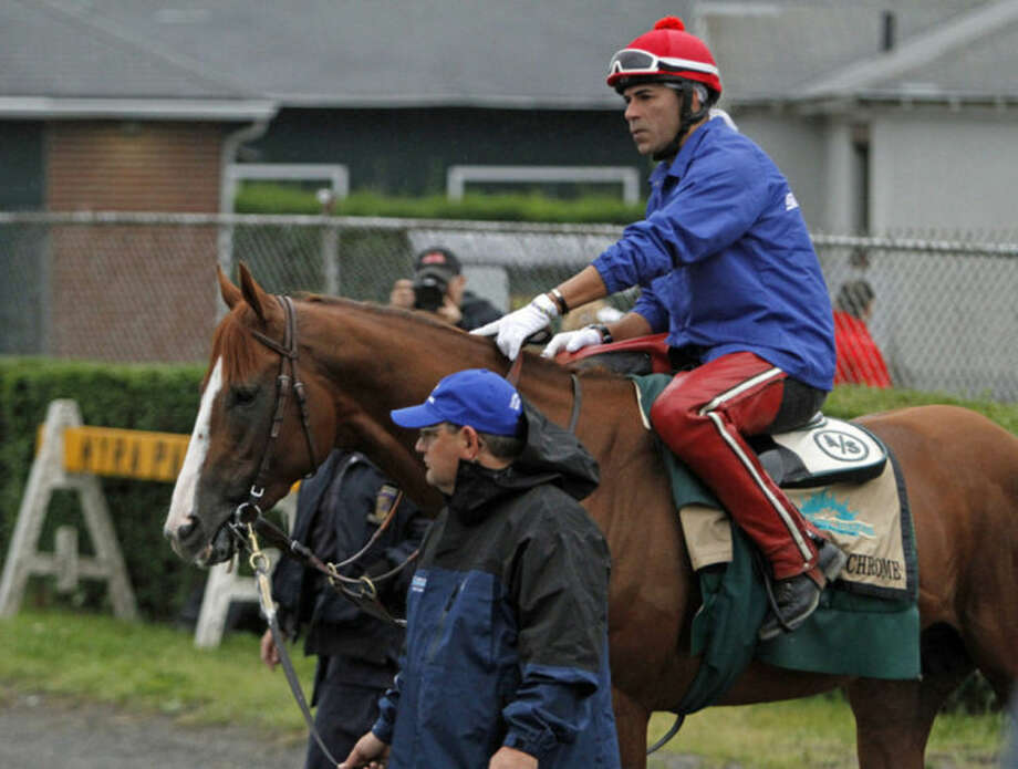 California Chrome is led to the race track by assistant trainer Alan Sherman with exercise rider Willie Delgado aboard at Belmont Park race track in Elmont, NY., Thursday, June 5, 2014. Kentucky Derby and Preakness Stakes winner California Chrome will try for the Triple Crown on Saturday, June 7th. (AP Photo/Garry Jones)