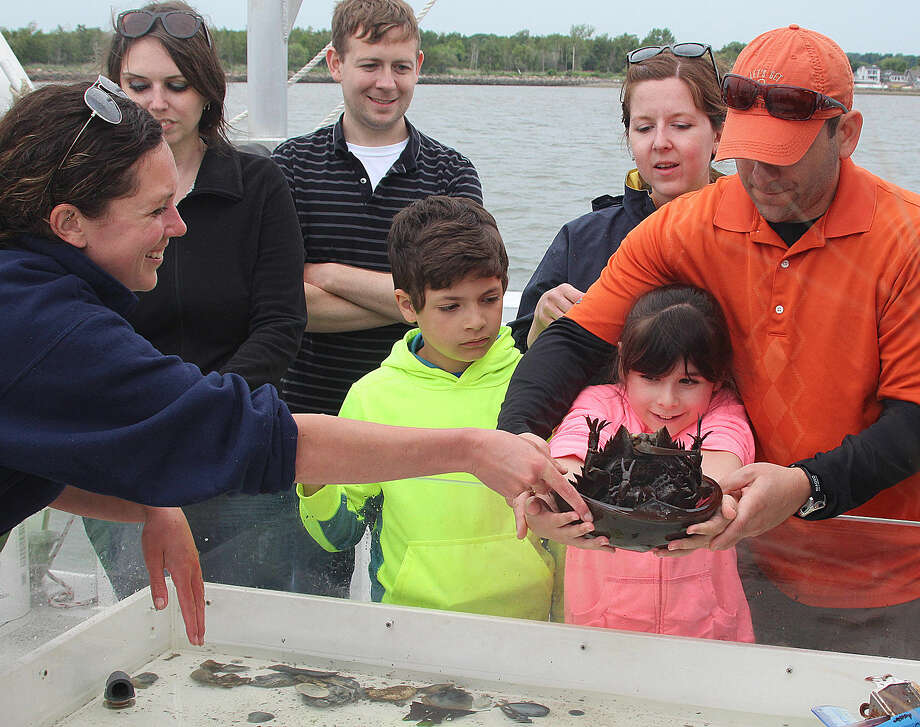 Hour photo/Chris Bosak Maritime Aquarium at Norwalk educator Nicole Rosenfeld hands off a horseshoe crab to Chloe McKernan to return to Long Island Sound during a cruise aboard the Aquarium's new research vessel RV Spirit of the Sound on Saturday afternoon.