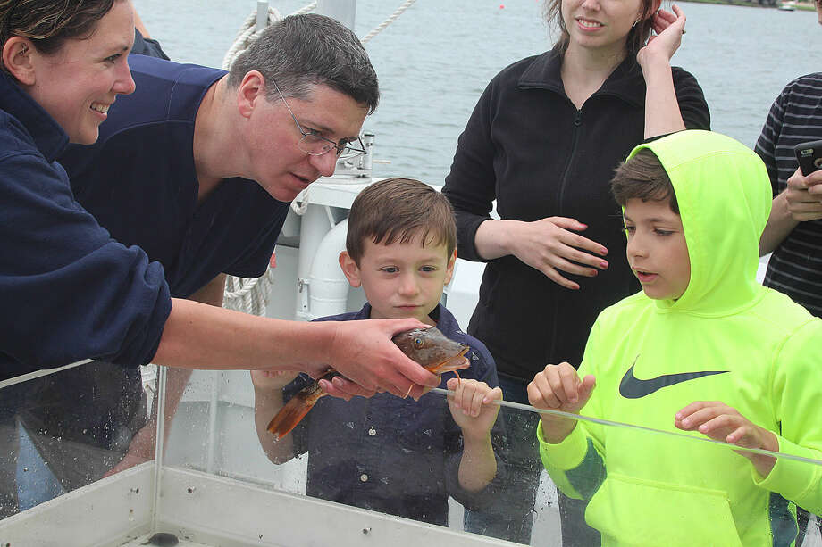 Hour photo/Chris Bosak Maritime Aquarium at Norwalk educator Nicole Rosenfeld shows off a sea robin that was caught in a net from from Long Island Sound during a cruise aboard the Aquarium's new research vessel RV Spirit of the Sound on Saturday afternoon.