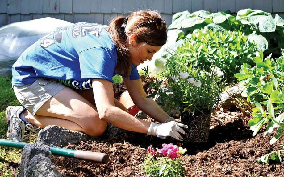 Hour photo / Liana Sonenclar Lindsey Herring, a Deloitte employee, plants flowers as part of the 15th anniversary of IMPACT Day.